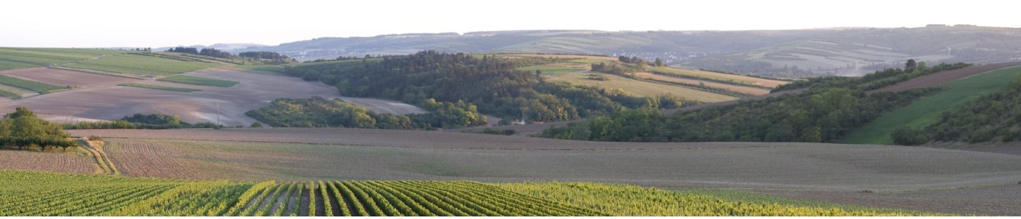 Le sedi Assiteca Agricoltura: Verona Prato Pordenone