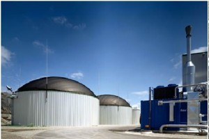 impianto-biomasse