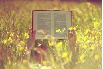 Libri: estate 2016, leggere in vacanza