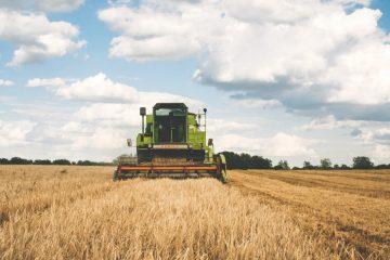 Polizze agricoltura
