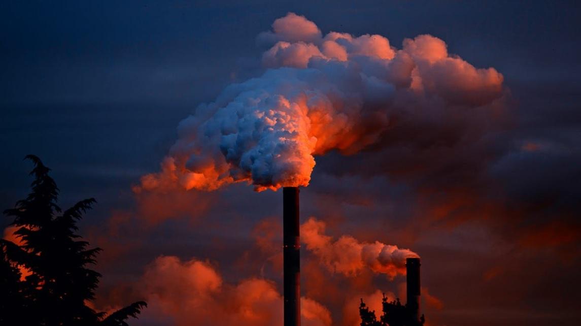 assicurazione danno ambientale