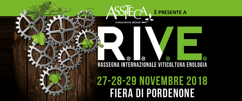 RIVE expo