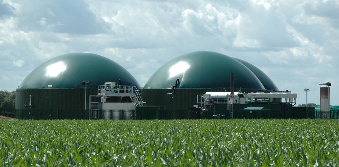 biogas biomasse impianti agricoli