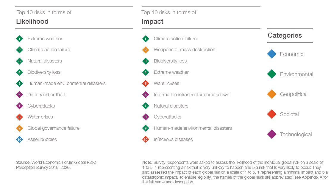 WEF Global Risk Report 2020